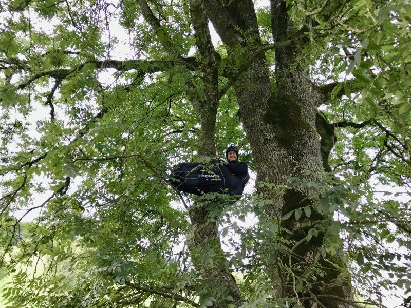 Baumlandung – und dann…