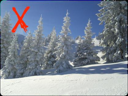 Schneeschuh-Tour 2019 abgesagt