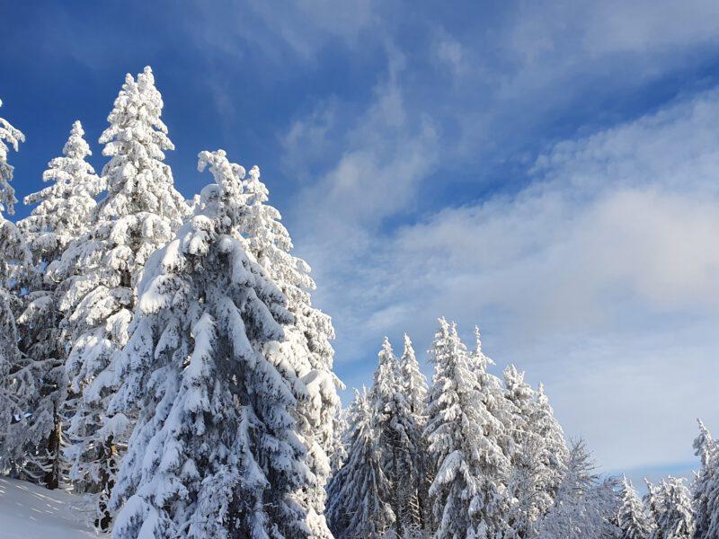 Schneehexe & Schaufeln parat